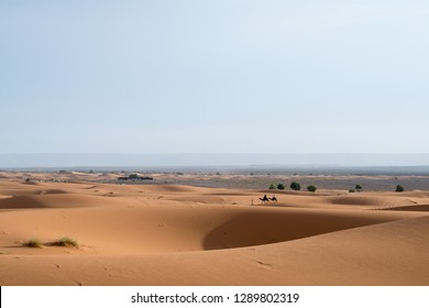 Merzouga, Morocco - October 22, 2018: Guide walking two camels with tourists riding astride from a desert camp