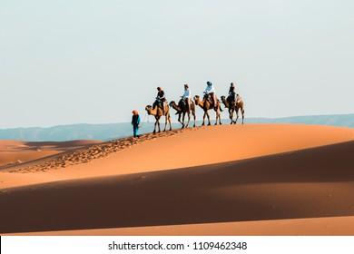 Merzuga, Morocco -31 June 2018/Camel caravan going through the sand dunes in the Sahara Desert. Merzuga.Morocco