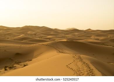 Merzuga, Sahara Desert, Morocco