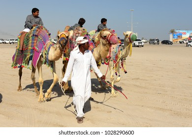 MESAIEED, QATAR - FEBRUARY 16, 2018: Local children enjoy a weekend camel ride at the Sealine resort area of Qatar.
