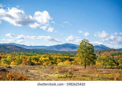 A mesmerizing colorful atmospheric landscape with an autumn maple grove in yellow and red tones which attract tourists on a panorama of a valley with a blue mountain ridge in Vermont, New England