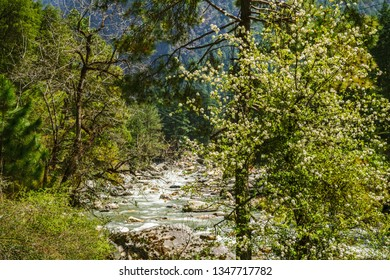 Mesmerizing view  Himalayas mountain valley at Kasol, Himachal Pradesh, India.