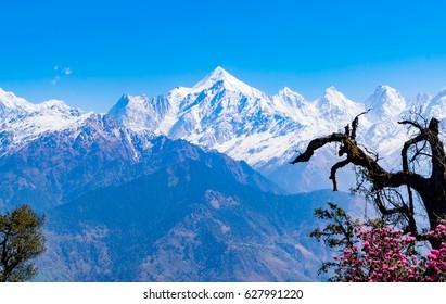 Mesmerizing view of Snow cladded Panchchuli peaks falls in great Himalayan mountain range and alpine grass meadows at small hamlet Munsiyari, Kumaon region, Uttarakhand, India.