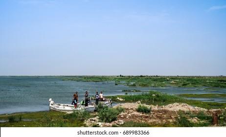 Mesopotamian Marshes, habitat of Marsh Arabs aka Madans - 05.11.2011, Basra  Iraq