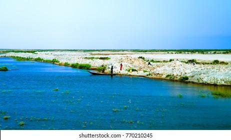 Mesopotamian Marshes, habitat of Marsh Arabs aka Madans near Basra Iraq