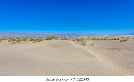 Mesquite sand dunes in desert of Death Valley, California, USA.