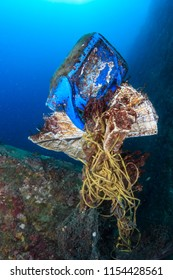 A mess of discarded plastic and fishing nets entangled on a tropical coral reef