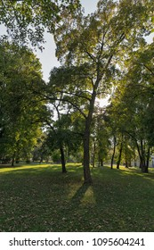 Mestsky or City park in Kosice Old Town, Slovakia. Kosice was the European Capital of Culture in 2013. - Shutterstock ID 1095604241