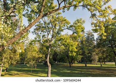 Mestsky or City park in Kosice Old Town, Slovakia. Kosice was the European Capital of Culture in 2013. - Shutterstock ID 1095604244