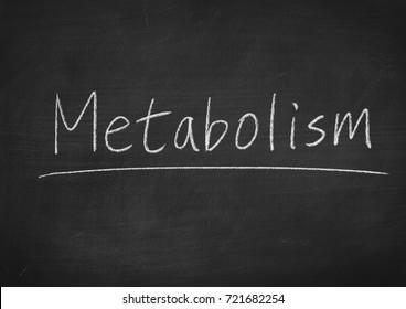 metabolism concept word on a blackboard background