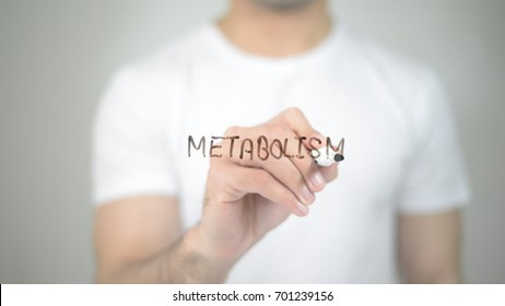 Metabolism, man writing on transparent screen