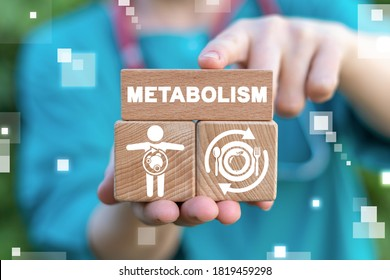 Metabolism Medical Concept. Diet Nutrition Immunity Human Health.