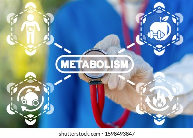 Metabolism Symbiosis Medical Concept. Human Comprehensibility Metabolic Syndrome.