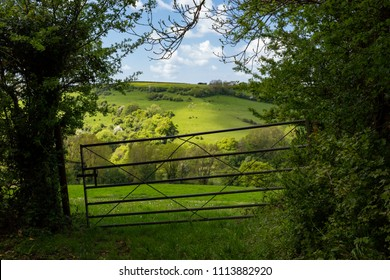 A metal bar gate leading onto lush green countryside.