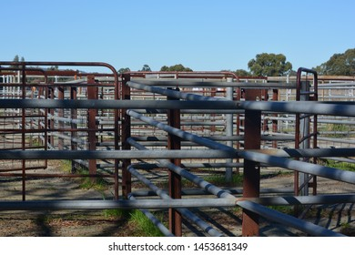 Cattle Yards Images Stock Photos Vectors Shutterstock