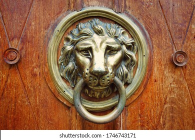 Metal decoration in the form of a lion's head on an old door