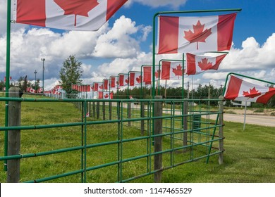 Metal fence decorated with multiple canadian flags