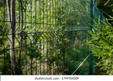 Metal fence on a country plot