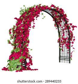 Metal grid that shaped as an arc with flowers on it pergola