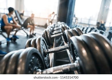 Metal heavy dumbbells in holder in modern gym.