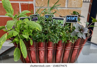 metal herb planter filled with sage, mint, thyme, rosemary, lavender and chives