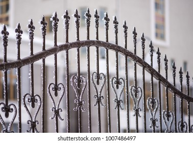 Metal, iron grating made of wrought iron against the background of a snow-covered tree.