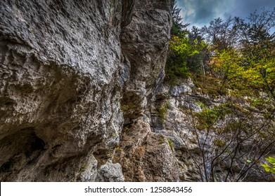 Metal ladder on via ferrata route Rudolf Decker Steig in Steinwandklamm, lower Austria