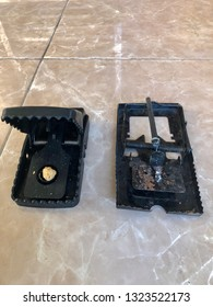 Metal and plastic mouse trap close up front view