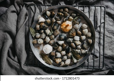 Metal plate with raw fresh vongole clams.  Ingredients for preparation clams.  background copy space