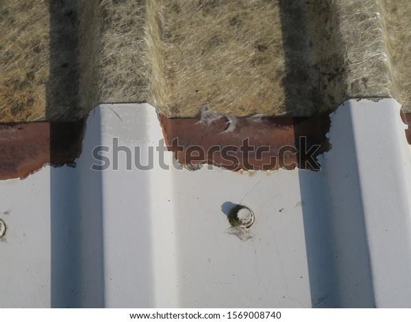 Metal Profile Roof Cut Edge Corrosion Stock Photo Edit Now 1569008740