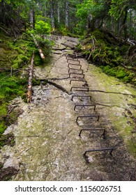 Metal rails mounted in stone forming a ladder up a large rock face in a lush forest, part of the Appalachian Trail in Maine.