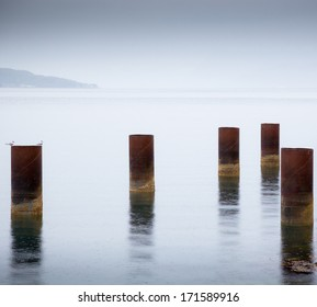 Metal support poles in water with barnacles and tern