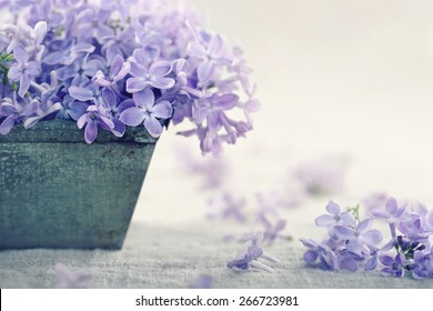 Metal vase with a bouquet of purple lilac spring flowers on vintage textured background