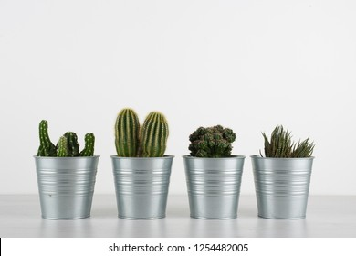 metal vases with succulents, white wall and wooden base