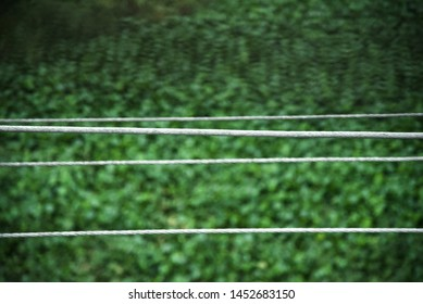 Metallic electric cables with green background photo