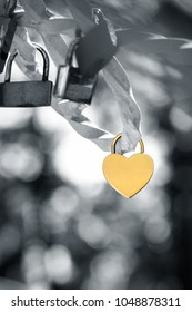 A metallic love padlock isolated on black and white background. Clipping path available