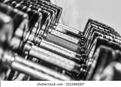 Metallic or steel heavy dumbbells, weightlifting equipment for weight training, sport, workout on stand in fitness gym on blurred grey background