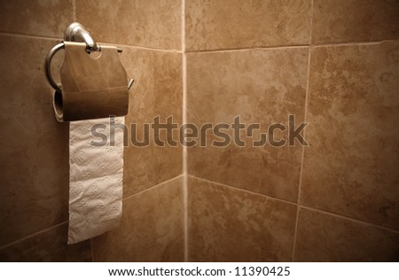 Metallic Toilet Paper Holder Almost Empty Stock Photo Edit Now