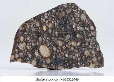 Meteorite primitive L3 Chondrite with large chondrules