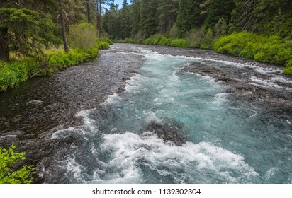 Metolius River, a popular Oregon fly fishing stream on the eastern slope of the Cascade Range, photographed in late spring from a bridge over the Metolius leading to the Wizard Falls Fish Hatchery.