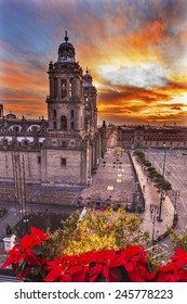 Metropolitan Cathedral Christmas in Zocalo, Center of Mexico City Mexico Sunrise