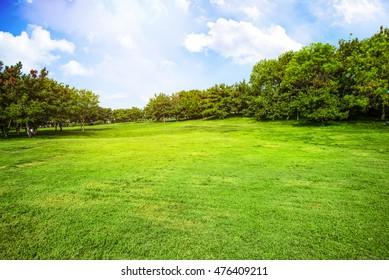 Metropolitan riverside lawn