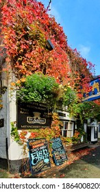 Mevagissey,Cornwall,UK 10-18-20 On a beautiful day colourful autumnal foliage adorns the famous  grade II listed Fountain Inn in the historic fishing port village of Mevagissey