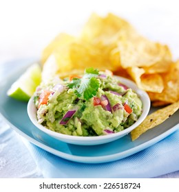 mexican guacamole with tortilla chips on plate