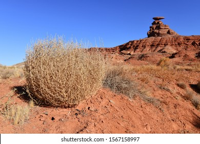 Mexican Hat rock formation with tumbleweed with desert background in southwestern USA