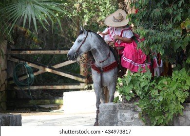 Mexican horse with girl in national suit