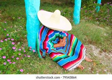 Mexican lazy sombrero hat man poncho nap in garden typical topic