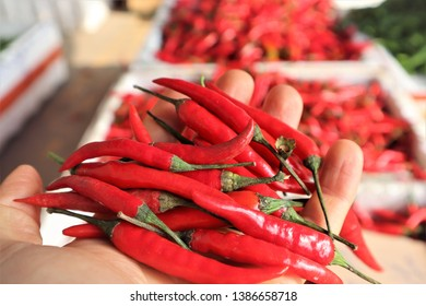 Mexican red chilli in chinese market
