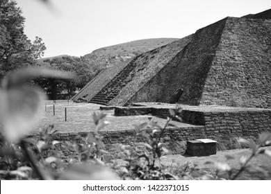 Mexicas' ruins in Mexico City