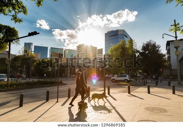 MEXICO CITY, MEXICO - CIRCA JANUARY 2019:  Masaryk avenue, Polanco